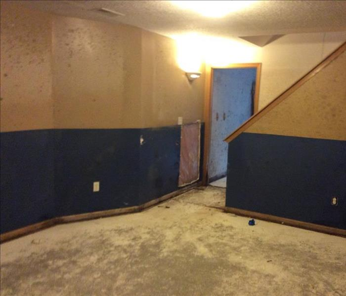 Mold Affects Entire Home in Tomah WI Before