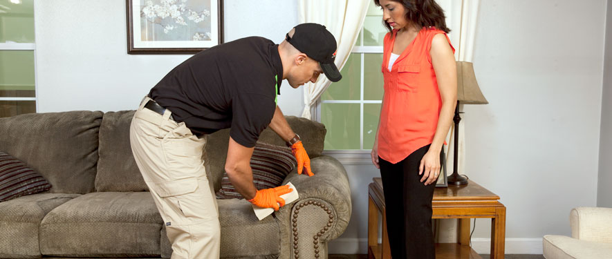 Prairie Du Chien, WI carpet upholstery cleaning